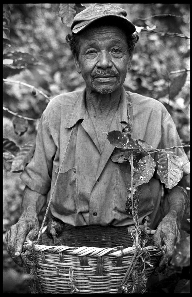 Cruz Alvarado Cano. A worker on Finca La Corona.