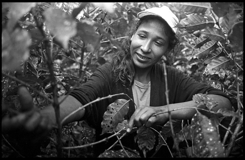 Santa, 19, a worker on La Corona farm, has been picking coffee since the age of 7.