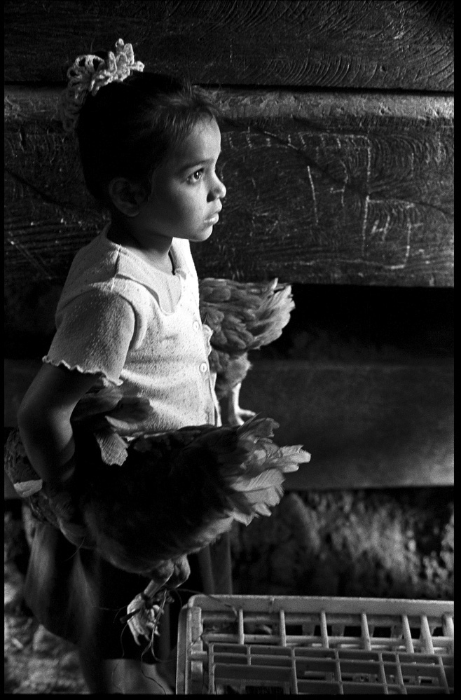 A sharecroppers daughter in Matagalpa, Nicaragua. The families of this patricular community had received seeds, and chickens as part of an aid package administered through CARE.
