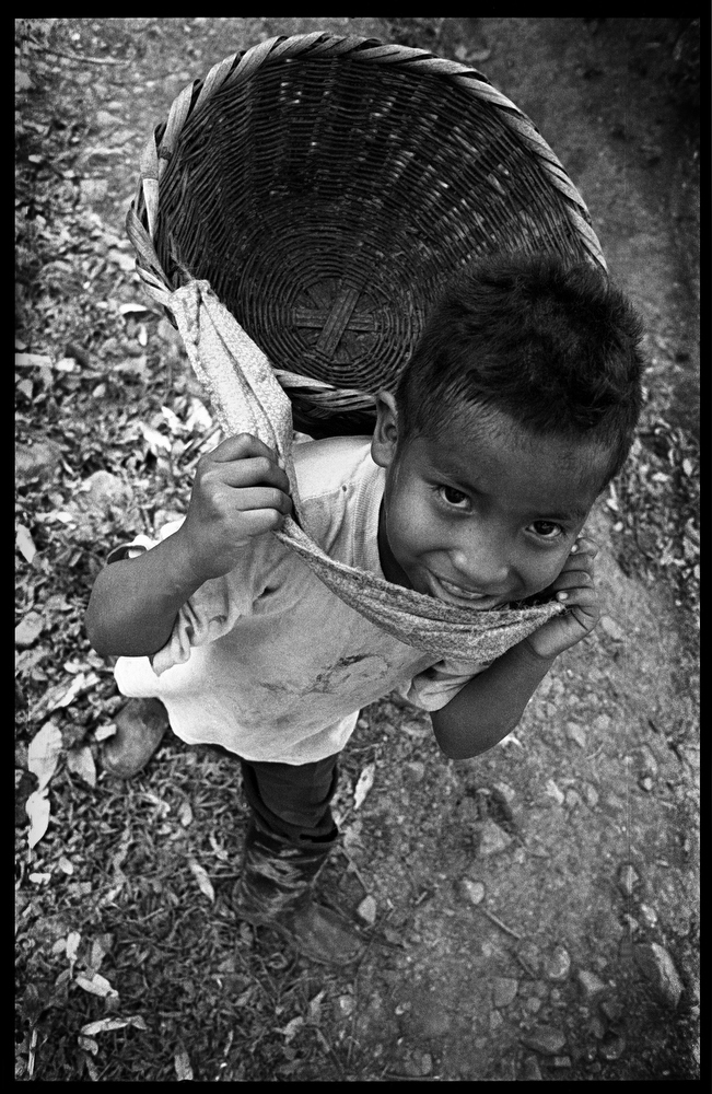 Freddy, a 6 year old on his way home from working in the coffee fields in the community of El Carmen , Matagalpa, Nicaragua.